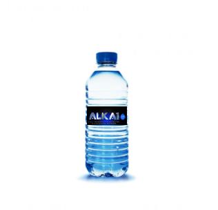 ALKA1 16.9 oz. Bottles (24 Pack)