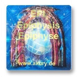EPI – Epiphyse