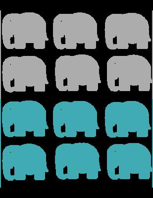 Blue and gray elephant tags