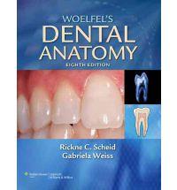 Woelfel's Dental Anatomy Eighth Edition